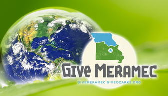 Support Your Local Nonprofits!